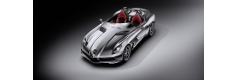 Las fotos del Mercedes SLR McLaren Stirling Moss
